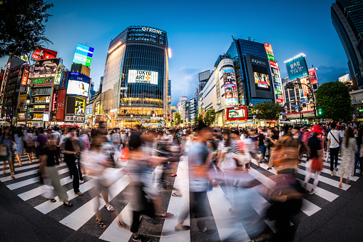 Fisheye View of Shibuya Crossing at Dusk