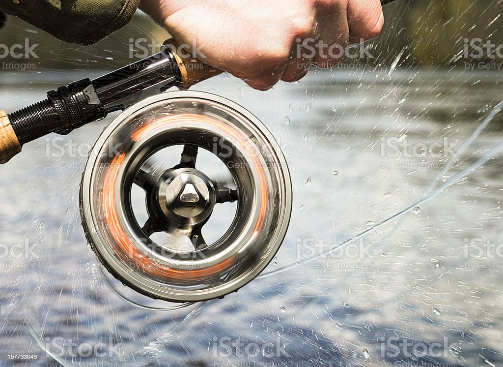 Fishing Action stock photo