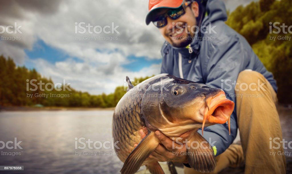 Fishing backgrounds. Young man hold big carp in his hands. stock photo