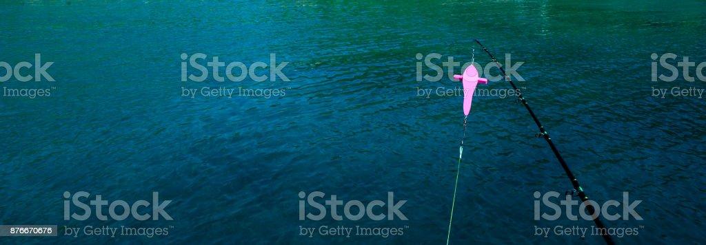 Fishing Bird rigs stock photo