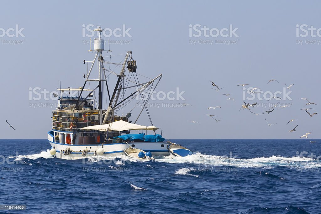 Fishing boat being followed by seagulls stock photo