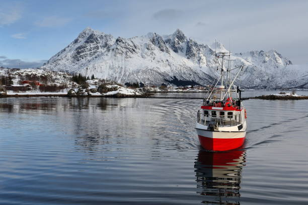 fishing boat entering sildpolltjonna bay from the east. austnesfjorden-austvagoya-nordland-norway. 0168 - fishing boat stock pictures, royalty-free photos & images