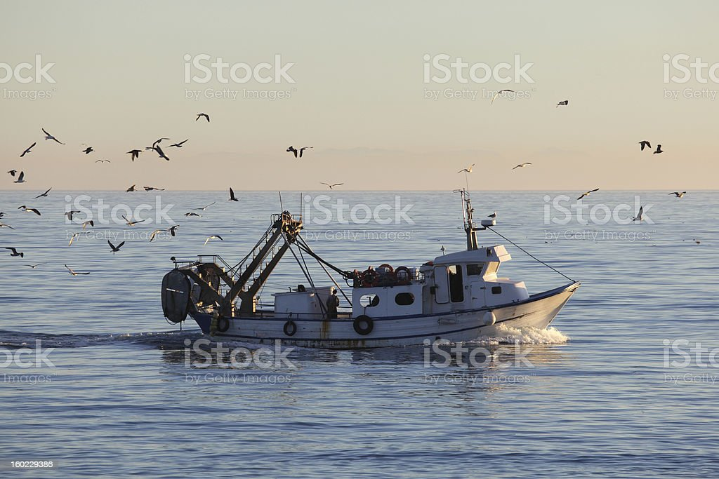 Fishing boat returning to home harbor royalty-free stock photo