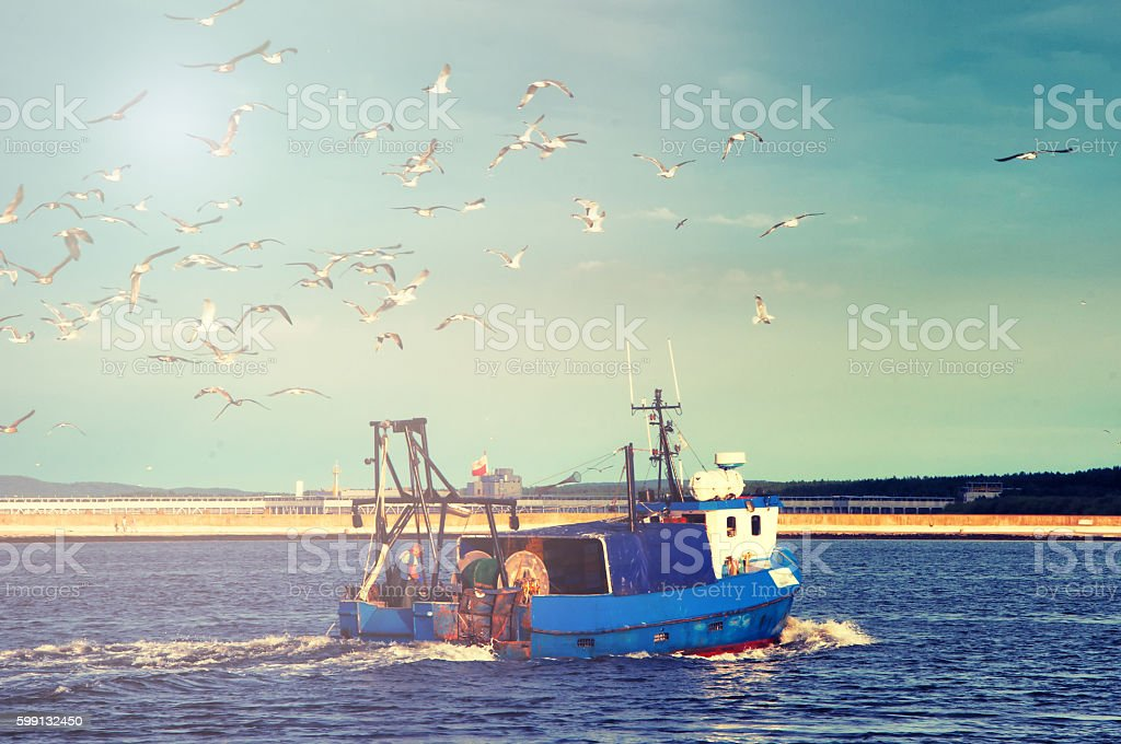 Fishing boat returning to home harbor with lots of seagulls stock photo