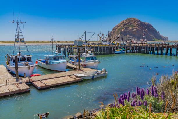 Fishing boats and harbor with sea otters at Morro Bay CA stock photo