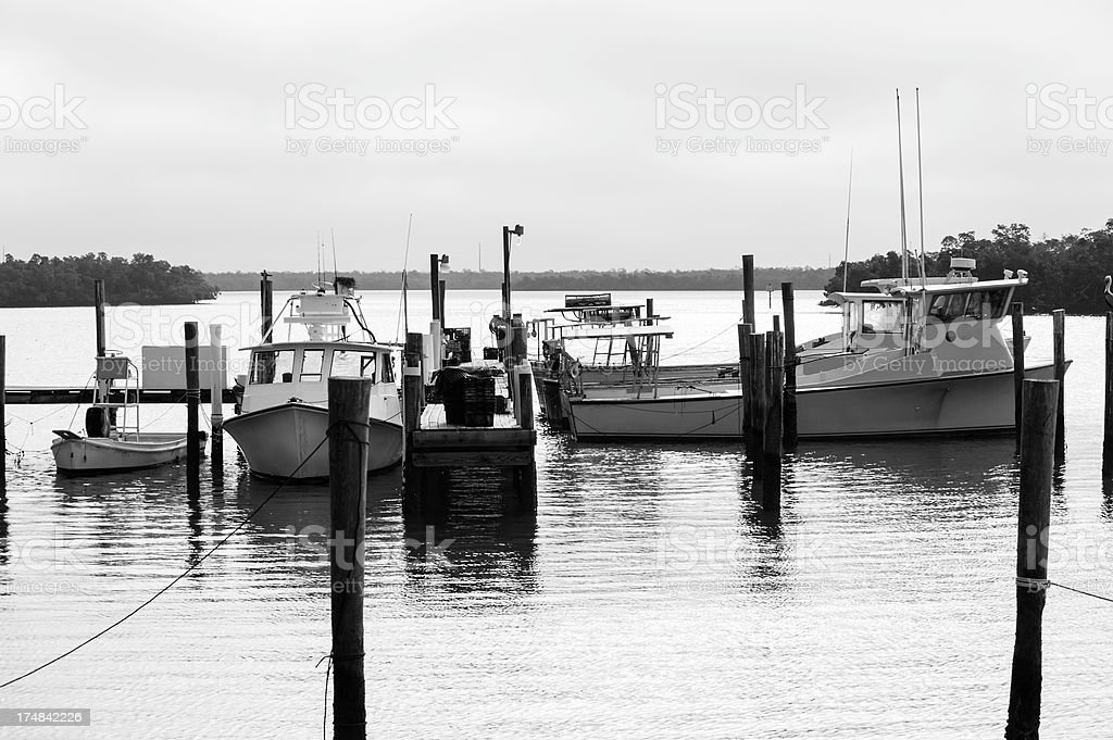 Fishing Boats at Dock royalty-free stock photo