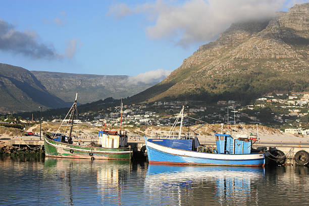 Fishing boats in Hout Bay Fishing boats in Hout Bay, with mountain background hout stock pictures, royalty-free photos & images