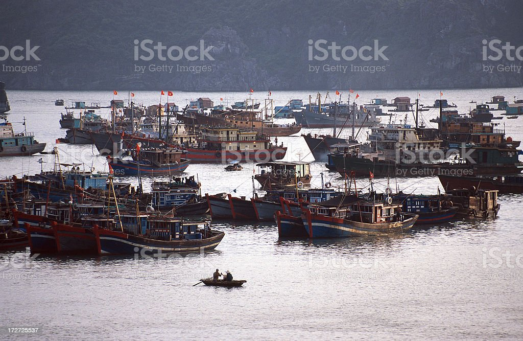 Fishing boats in the harbor of Cat Ba stock photo