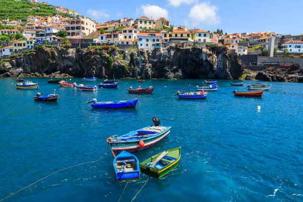 fishing boats on sea in camara de lobos port, madeira island - funchal imagens e fotografias de stock