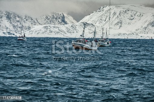 932662672istockphoto Fishing boats out for skrei cod in the arctic sea 1147301518