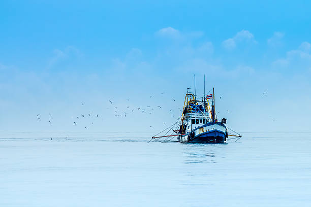 fishing boats - fishing boat stock pictures, royalty-free photos & images