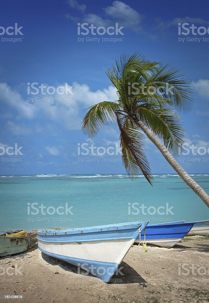 Fishing Boats with Lonely Palm on the Shore royalty-free stock photo