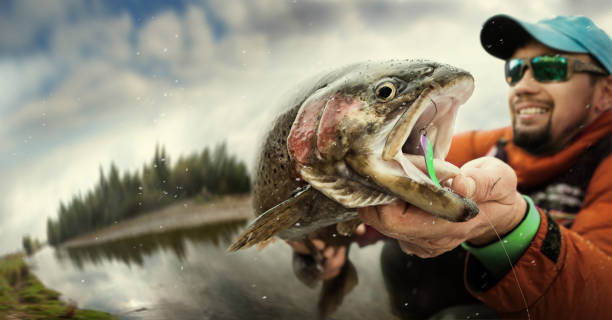 Fishing. Fisherman and trout. Dramatic. Fishing and trout fisherman stock pictures, royalty-free photos & images