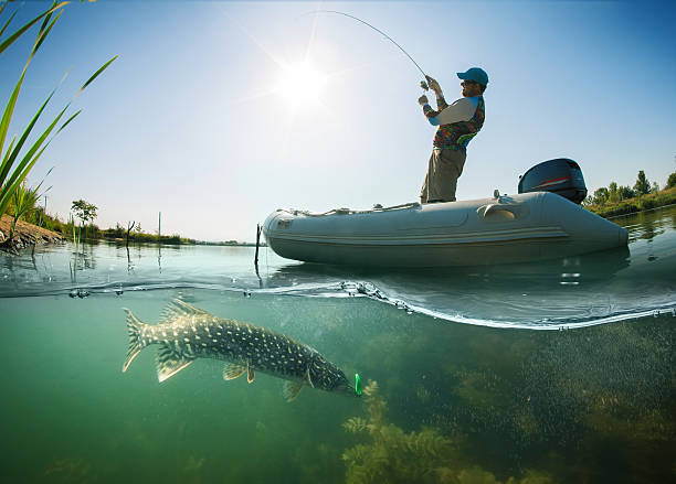 Fishing. Fisherman on the boat. Underwater view. Pike Fishing. Underwater view pike fish stock pictures, royalty-free photos & images