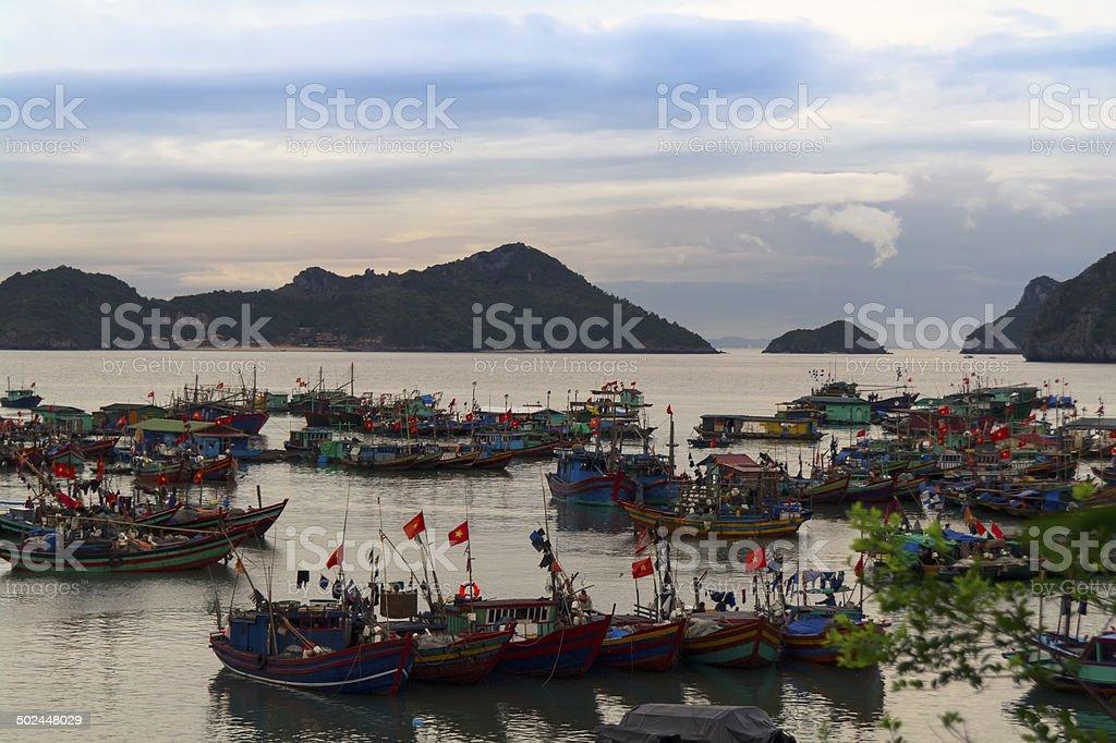 Fishing Fleet in Cat Ba Island. stock photo