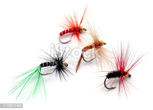 istock Fishing flies of diffrent colors 1173271187