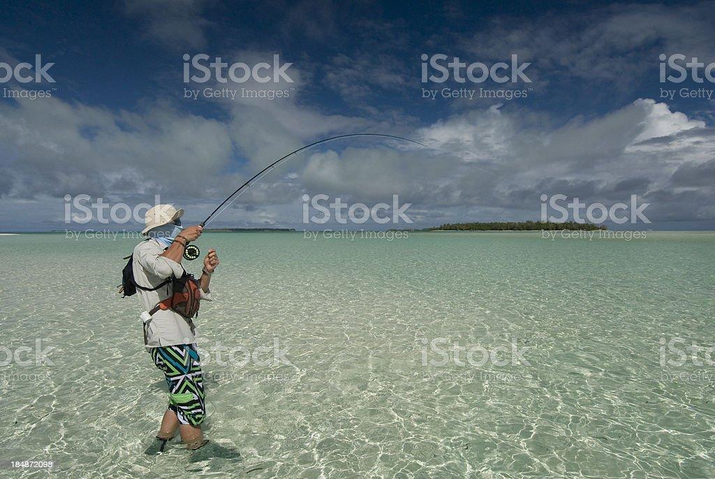 fishing for bonefish stock photo