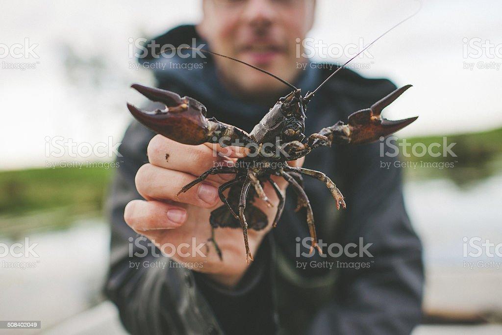 Fishing for crayfish stock photo