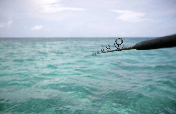 Fishing for nothing Long fishing pole stretches out over the caribbean. bunnylady stock pictures, royalty-free photos & images