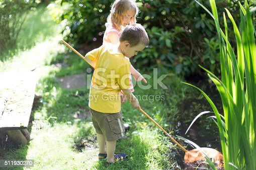 Little boy and girl catching pond life with a fishing net in their garden