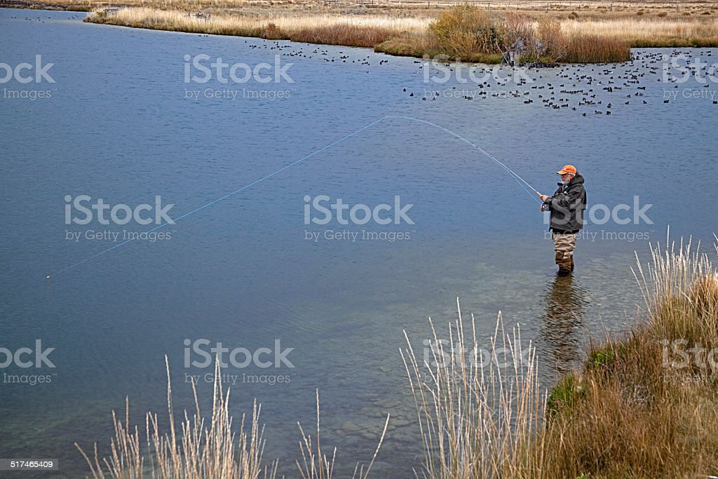 Fishing for Trout stock photo