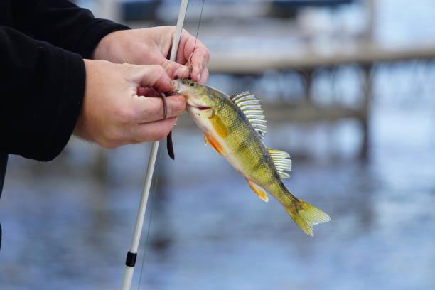 angeln bei jedem wetter - crappie angeln stock-fotos und bilder