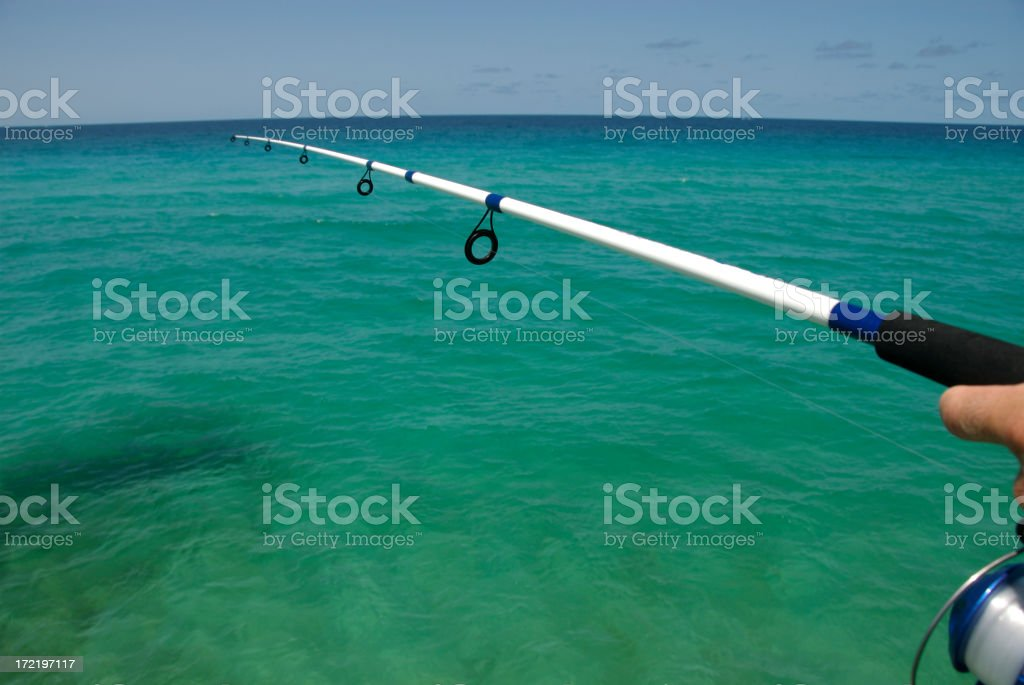 Fishing in the Gulf royalty-free stock photo