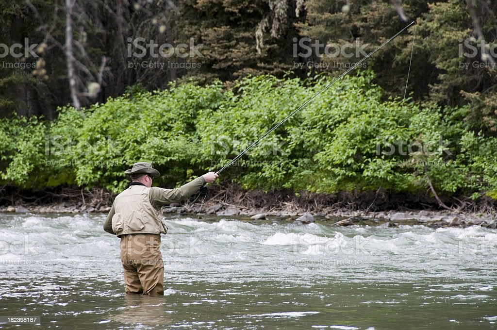 Fishing in the River royalty-free stock photo