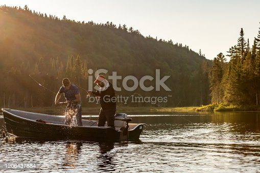 Two fishermen catching a fish in a boat on a lake of Lanaudiere area, Quebec during the fishing season at sunset.