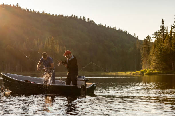 Fishing lake in early summer. Two fishermen catching a fish in a boat on a lake of Lanaudiere area, Quebec during the fishing season at sunset. fishing stock pictures, royalty-free photos & images