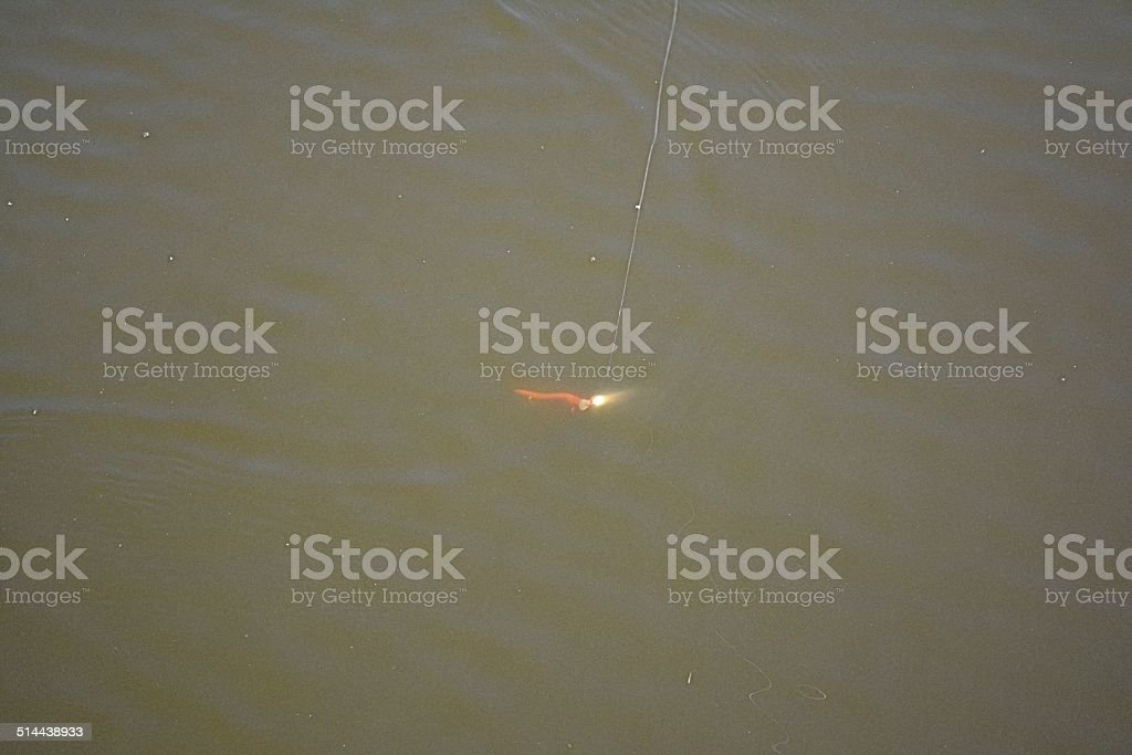 Fishing Lure in Water stock photo