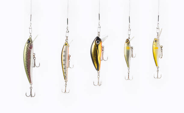 Fishing lures on white background. - foto stock