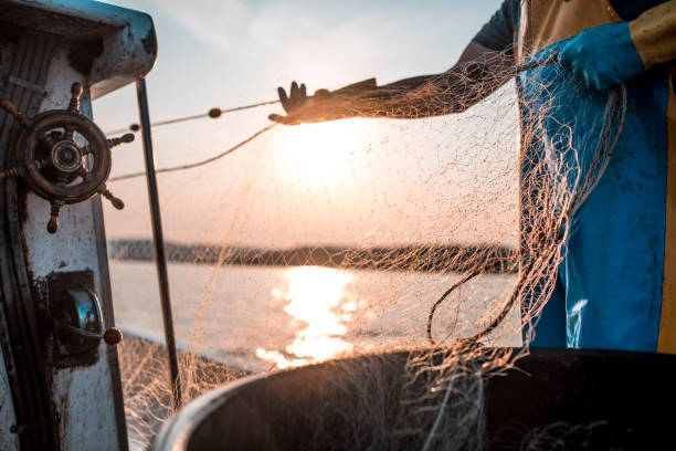 fischernetz ist ein muss - segelhandschuhe stock-fotos und bilder