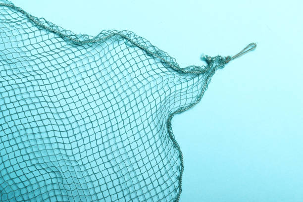 Fishing net isolated. Background or design element. Fishing net isolated. Trap as a tool for lndustrial use. Agricultural theme. fishing net stock pictures, royalty-free photos & images