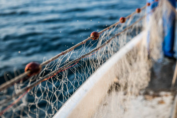 fishing net on the boat - fishing boat stock pictures, royalty-free photos & images