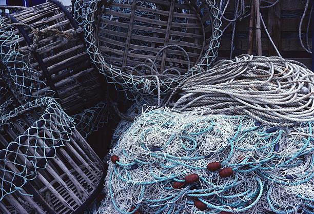 Fishing Nets and Traps, France