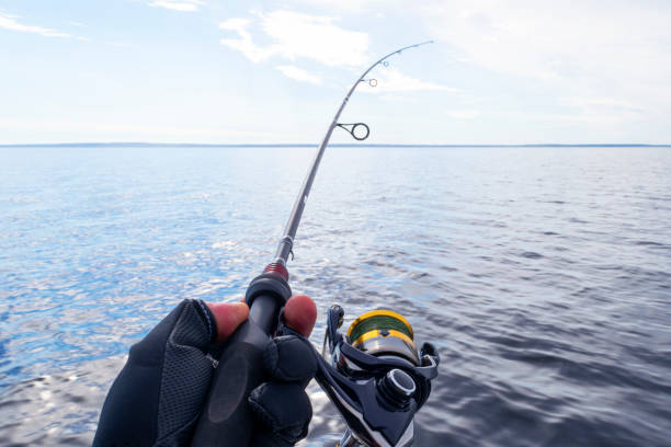 Fishing on the lake. Hands of fisherman with fishing rod. Macro shot. Fishing rod and hands of fisherman over lake water. Spinning rod. Fishing tackle stock photo