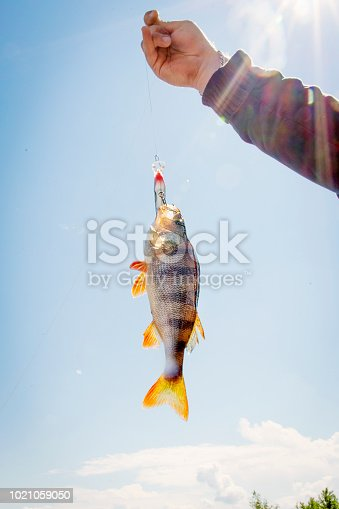 139888169 istock photo Fishing on the river. 1021059050