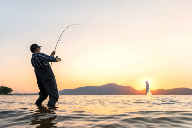 Fishing Fishing. Young asian man fisherman and trophy Pike is fishing on a lake at sunset. freshwater fishing stock pictures, royalty-free photos & images