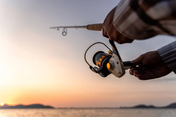 Fishing Fishing on the lake at sunset. Closeup spinning in the male hand, Fishing background. freshwater fishing stock pictures, royalty-free photos & images