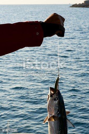 139888169istockphoto Fishing 918212230
