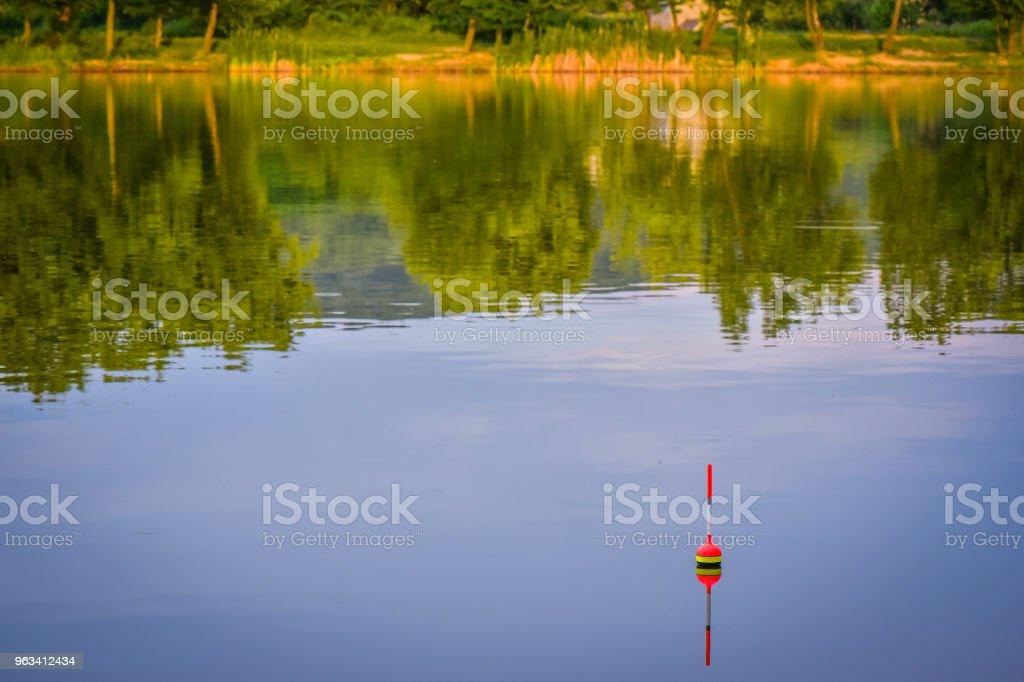 wędkarstwo - Zbiór zdjęć royalty-free (Bez ludzi)