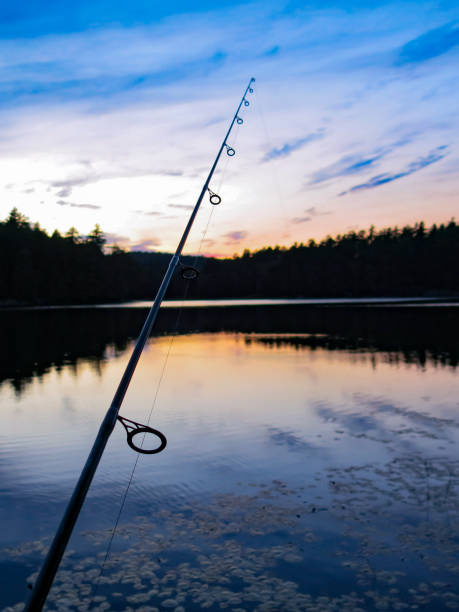 Fishing Pole Night Silhouette, Reflection on Water stock photo