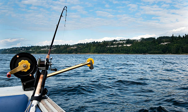 Fishing Pole on Downrigger stock photo