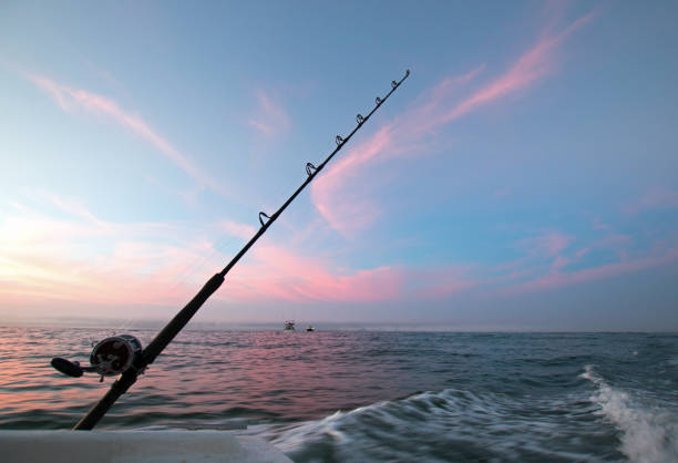 Fishing road on charter fishing boat against pink sunrise sky on the Sea of Cortes in Baja Mexico BCS stock photo