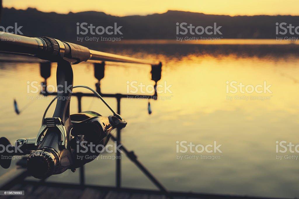 Fishing rod  – Foto