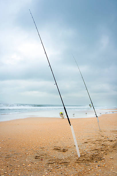 Fishing rods by the sea stock photo