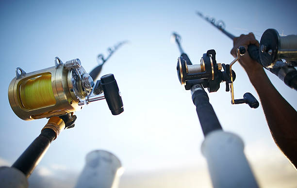 Fishing rods early in the morning Fishing rods early in the morning. fishing reel stock pictures, royalty-free photos & images