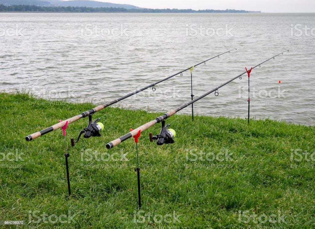 Fishing rods set up on edge of lake. Lake Balaton, Kesztely, Hungary. stock photo