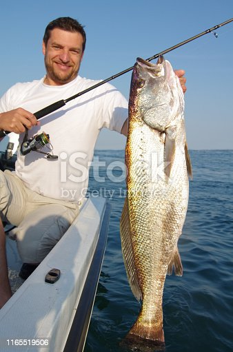 istock Fishing scene, catch of fish, meager fish 1165519506